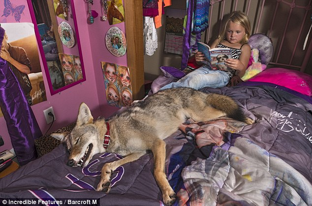 Su Padre trajo a casa un extraño cachorrito. Pero fíjate bien, No es un perro normal...