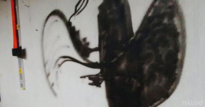 eres capaz de ver imagen ilusion optica vaquero banner