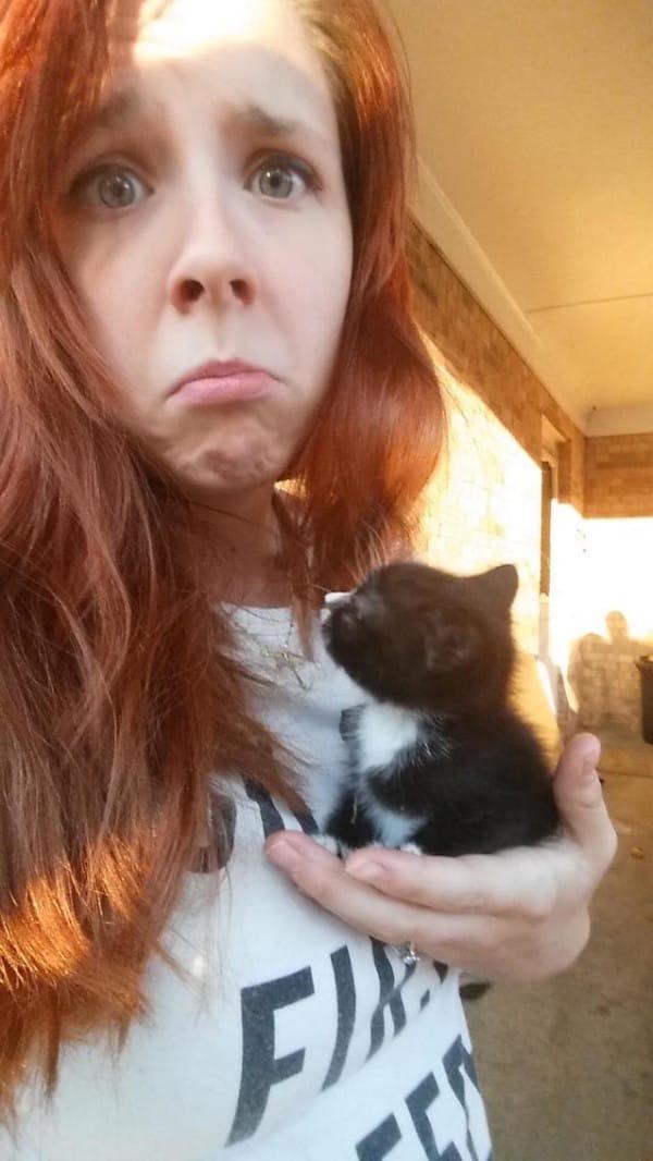 gatito abandonado_3
