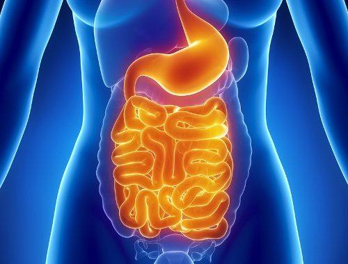 Descubre los beneficios que tiene beber de recipientes de cobre para nuestra salud 04
