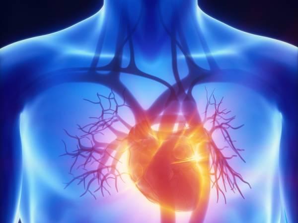 Descubre los beneficios que tiene beber de recipientes de cobre para nuestra salud 06