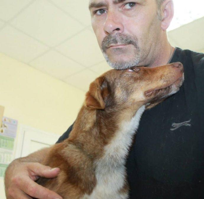 Rescatan a un perro que llevaba encadenado 10 días a un remolque oxidado