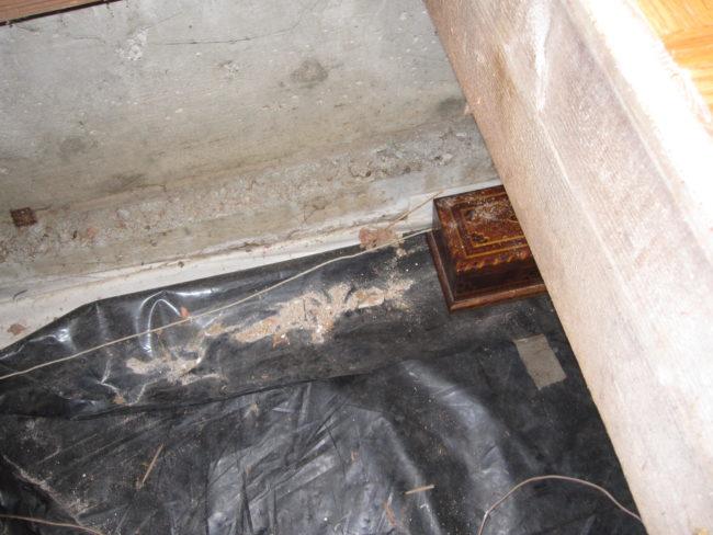Encontraron este extraño cofre oculto bajo el suelo de su nueva casa... ¡Mira lo que escondía dentro!