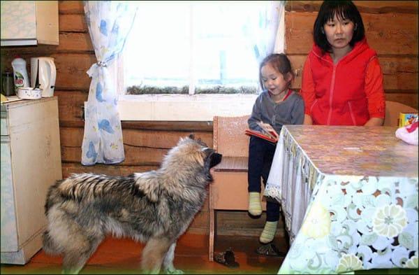Todos pensaban que la pequeña de 11 años había muerto. 11 días después, siguió a su perro hacia el bosque y mira lo que encontró