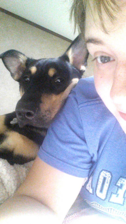 Tras ser rescatado, este perro ayudó a su dueña a superar su depresión y ansiedad.