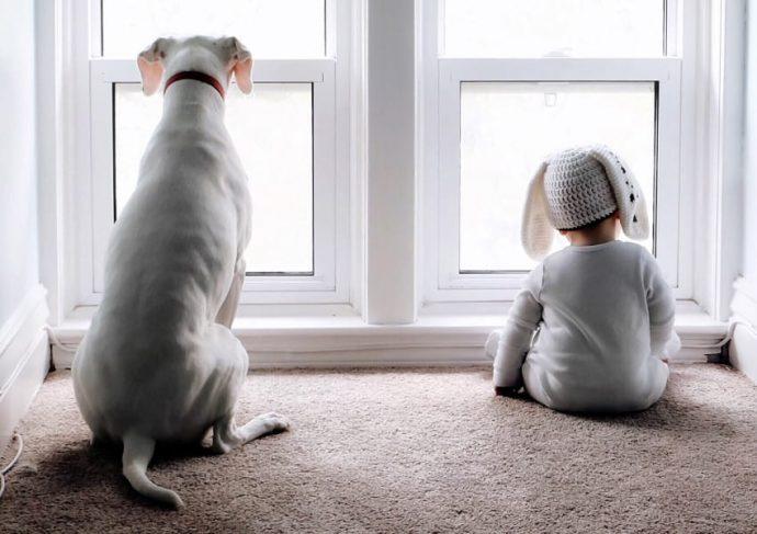 Esta madre saca unas fascinantes fotografías del lazo que une a su bebé y su perro