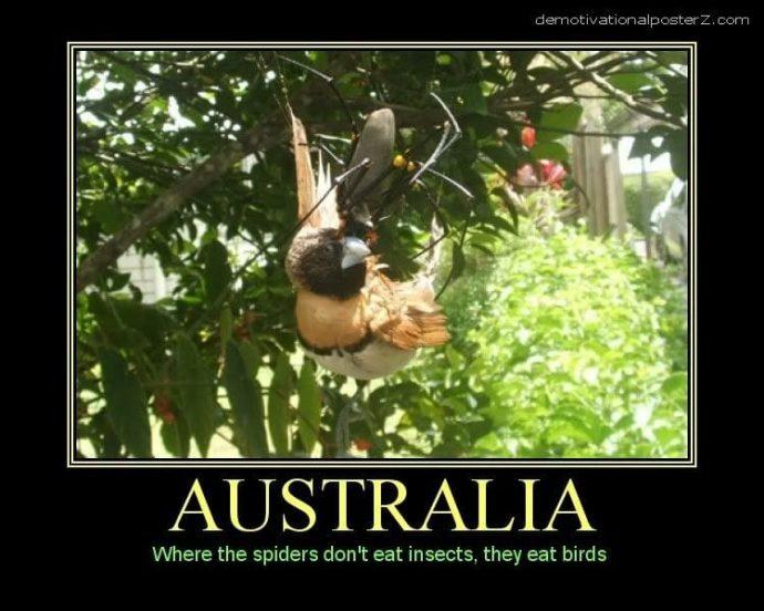 10 Imágenes que muestran por qué Australia debería quedarse bien abajo