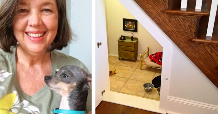 esta mujer construye una increible habitacion inspirada en harry potter para su perro banner