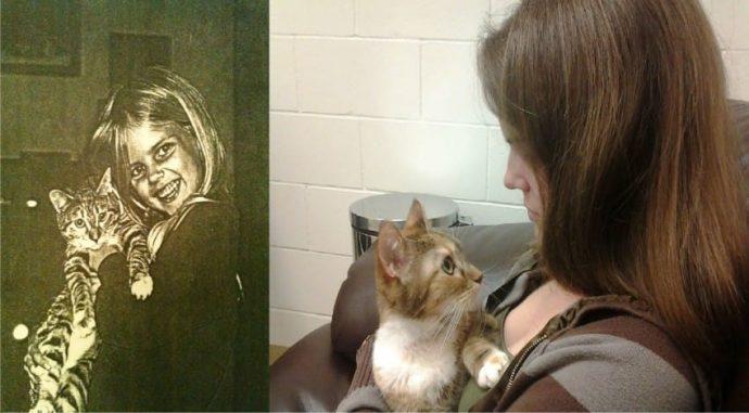 Un gato agonizante se viraliza al consolar a su familia en su última visita al veterinario