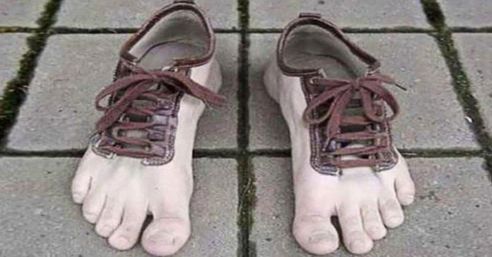 16 zapatos que nunca te pondrias banner
