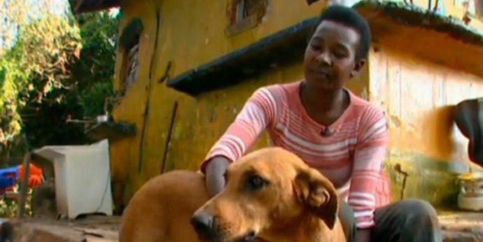 Un Perro y su 'bolsa de basura' encogen el corazón de Internet convirtiéndose en Noticia