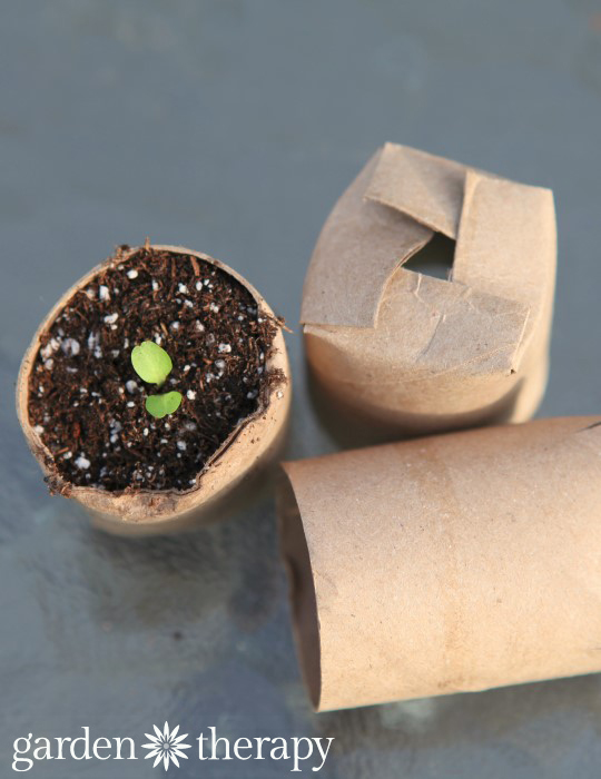 11 Ideas para transformar los rollos de papel higiénico usados y no deshacerse de ellos