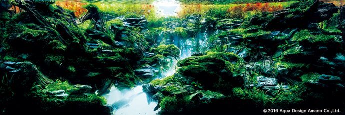 12 Increíbles Paisajes acuáticos que romperán todos tus esquemas