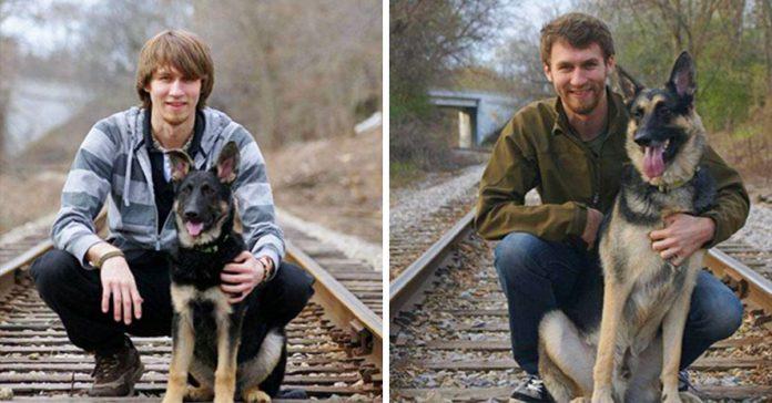 33 adorables fotos de cachorros que crecieron demasiado rapido banner