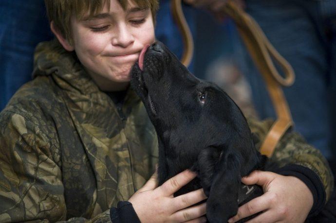 9 Cosas que suelen hacer los perros cuando necesitan decir algo