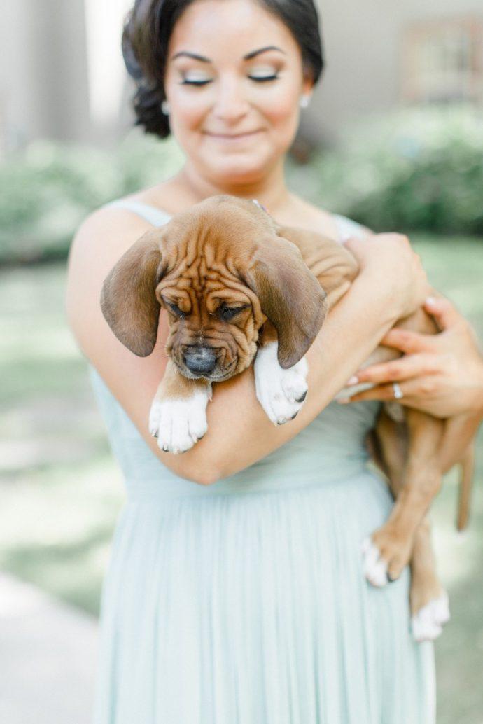 Estas damas de honor llevan cachorros rescatados en lugar de flores