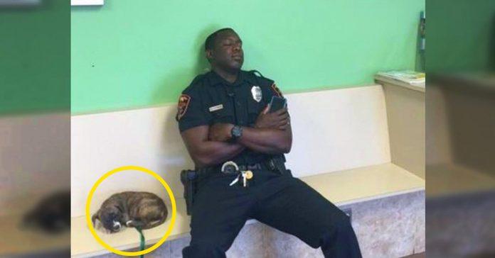 este policia encuentra un cachorro abandonado y no lo deja ni un segundo hasta que se asegura que esta a salvo banner