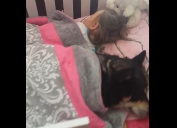 Esta madre adoptó a un nuevo perrito, y cuando vió dónde estaba, ¡se le derritió el corazón!
