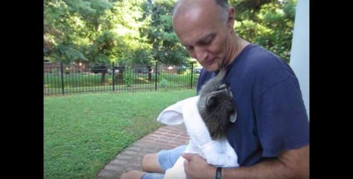 Una criaturita abandonada se viraliza en vídeo tras unos meses de ser salvada