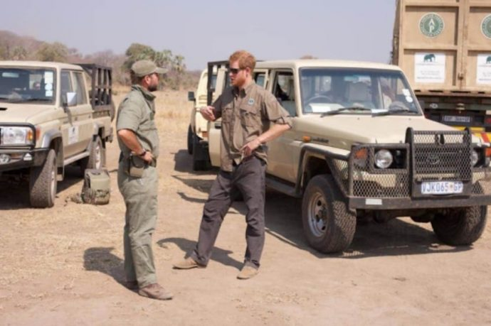 Te enseñamos el gran acto que hizo el Príncipe Harry salvando a estos elefantes de todo peligro
