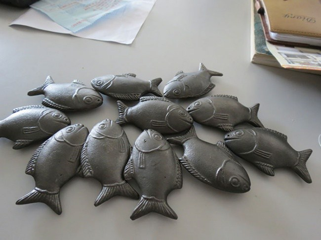 Un doctor llevó estos diminutos peces a un país pobre. Pero un año después, todos se dieron cuenta de lo que suponía realmente