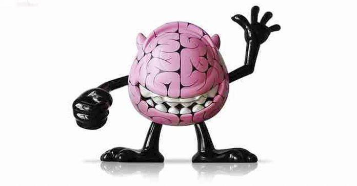 habitos cotidianos cerebro