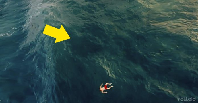 imagenes aterradoras oceano