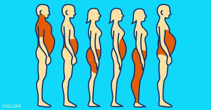 obesidad tipo cuerpo banner