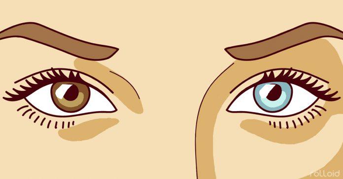 ojos azules marrones banner