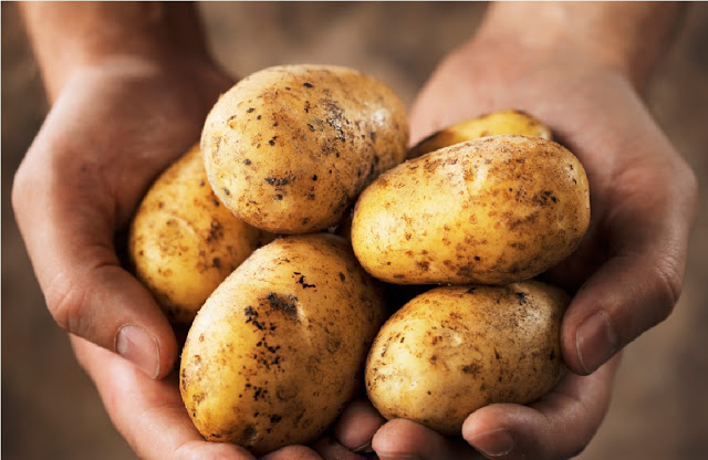 que ocurre si solo te alimentas a base de patatas durante todo un ano 1484491330
