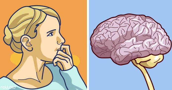 4 alimentos que pueden danar tu cerebro memoria