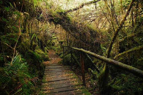 Qué ver y visitar en Chile para enamorarte de este increíble país
