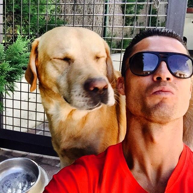 Cristiano Ronaldo rescata a 80 perros de un refugio.