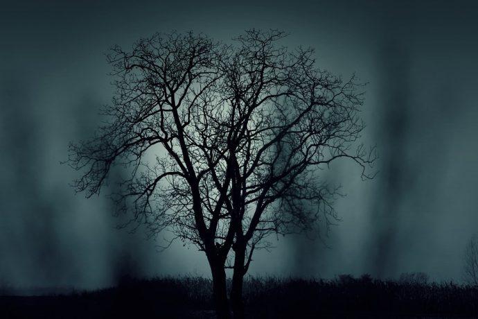10 Eventos Paranormales presenciados por la Policía