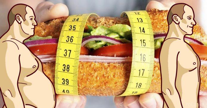 alimentos comidas perder grasa banner