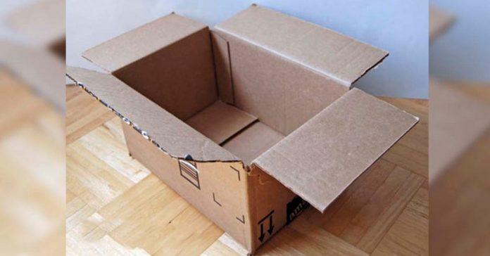 transforma una caja de carton en algo que querras tener en tu banxxo banner