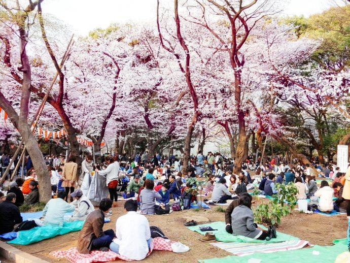 4 Leyes japonesas que sorprenden a todos los turistas