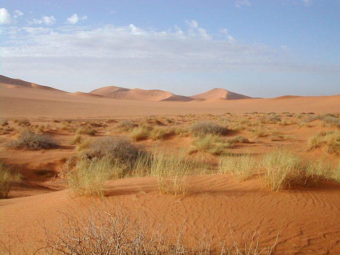 Cómo se originó el Sahara, el desierto más grande del mundo