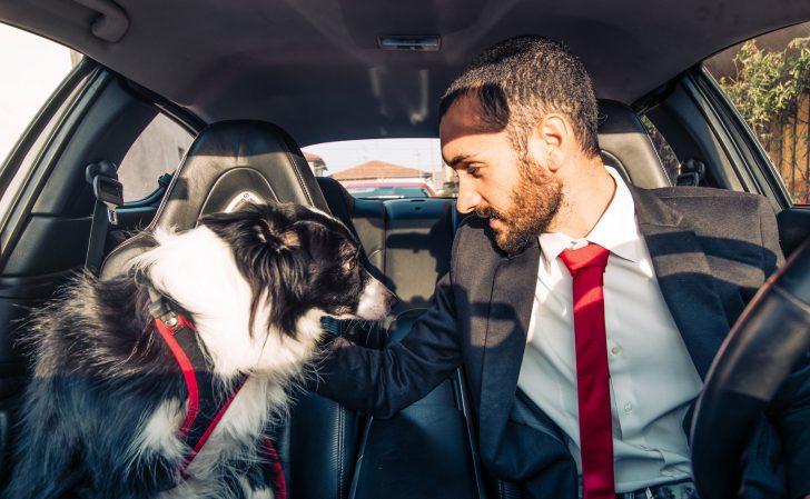 Descubre lo que dice la ciencia sobre ti si hablas con tu perro o las plantas