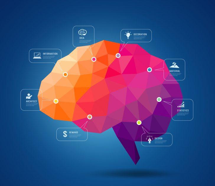 La ciencia afirma que el cerebro de los artistas funciona distinto al de los demás