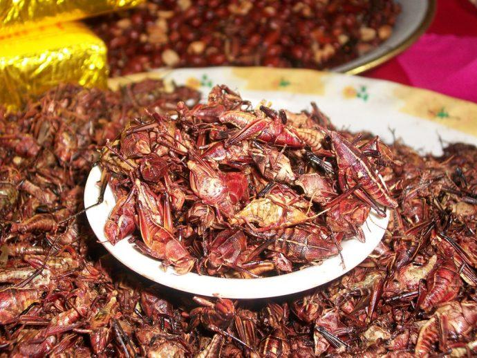 Estas recetas son de lo más popular en su país, aunque tú no las probarías
