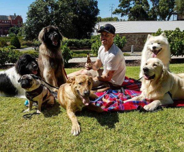 Este chico australiano se ha propuesto salvar a todos los perros del mundo