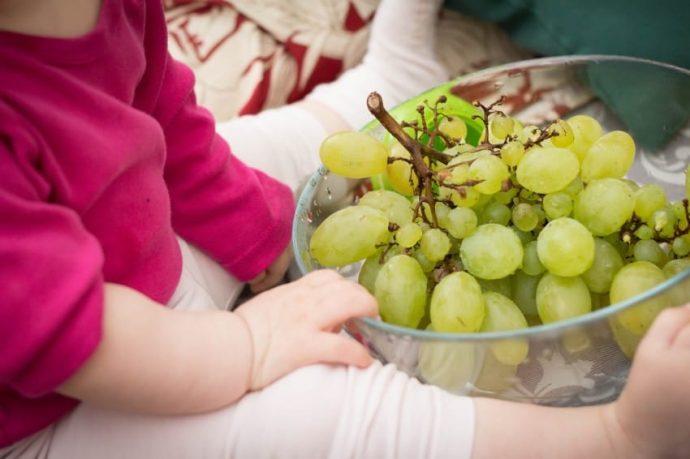 Una aterradora radiografía de un pequeño de 5 años revela por qué los niños no deberían comer uvas sin supervisión