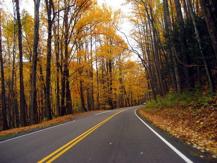 Excursiones y rutas a la naturaleza que terminaron horriblemente mal y con desapariciones
