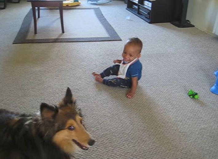 Un bebé y su cachorro se viralizan cuando su padre los pilló in fraganti en vídeo