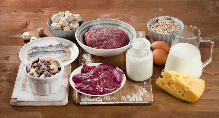 vitamina b12 carne lacteos
