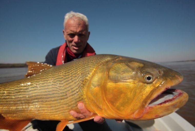 15 animales realmente extranos pescados en rios 147765