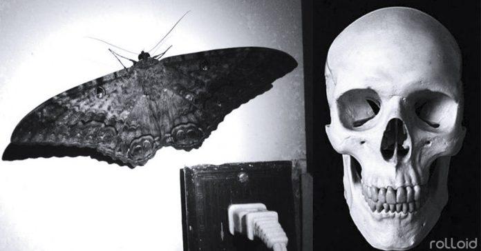20 malos presagios que avisan de que la muerte esta cerca banner