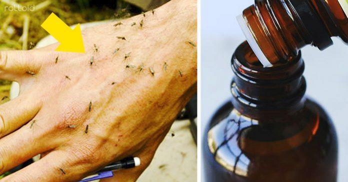 aceites esenciales espantar mosquitos banner