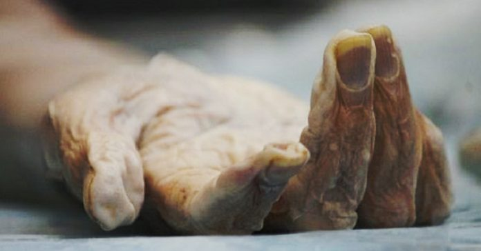 cientifico indio pretende revivir a los muertos banner